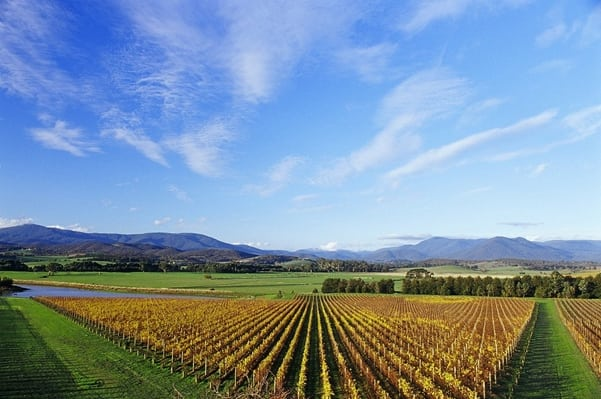 melbourne-wine-tours