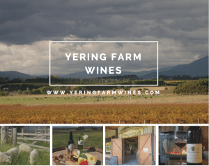 winery bus tours