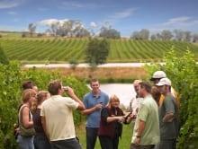 Australian Wine Tours