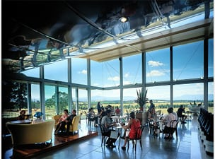 Winery restaurant showing room full of seated diners and floor to ceiling windows with view of Yarra Valley winery