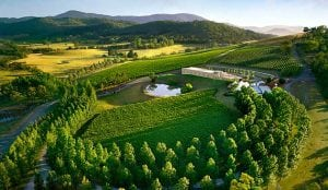 spotlight on the yarra valley